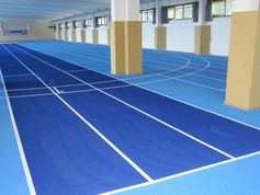Blue is the predominant colour at Jena's indoor sports hall.