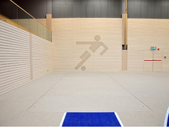 Long jump pit covered with Regupol® AG in the Barbarossa Hall, Kaiserslautern, Germany.