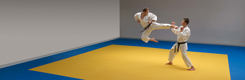 BSW tatami grab and kick REGUPOL BSW GmbH